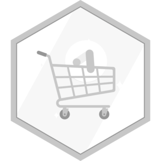 Google Shopping Certification by alldigiseo